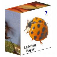 LP7-Box-200[1]