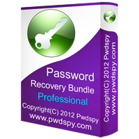 Password Recovery Bundle Professional – FREE STREAMING